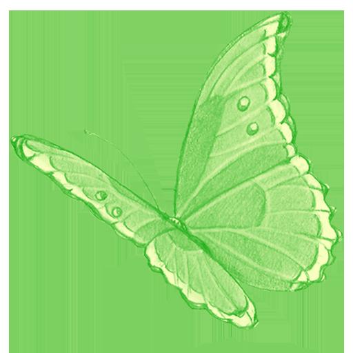 Die Grüne Fee